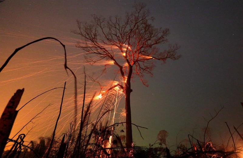 Cháy rừng ở Amazon nhanh chóng vượt tầm kiểm soát và lan rộng do gió lớn ở Brazil./.